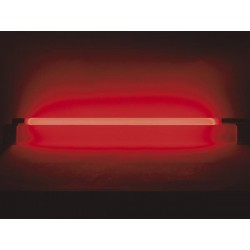 TUBE FLUORESCENT, 36W, ROUGE